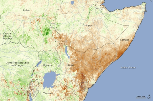"""NASA Vegetation Map East Africa January 2011"" by Jesse Allen of NASA Earth Observatory"
