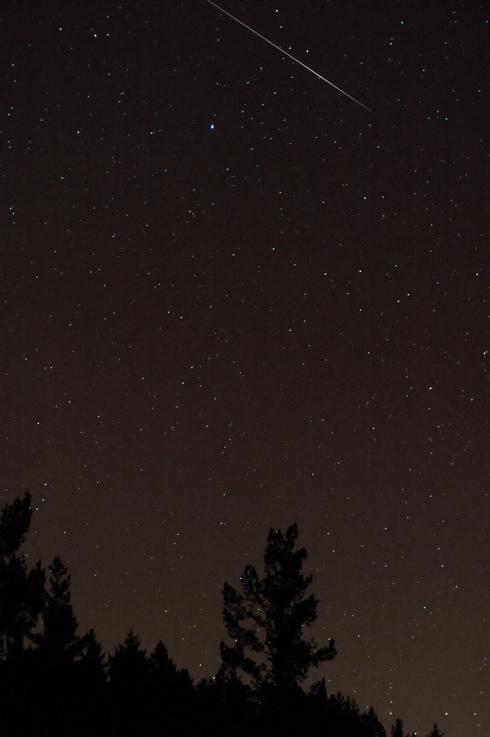 Quadrantid Meteor image by Navicore