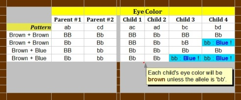"""Simple Baby Eye Color Predictor"" : image by Mike DeHaan"